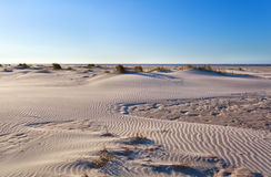 Sand dunes on North sea coast after sunrise Royalty Free Stock Images
