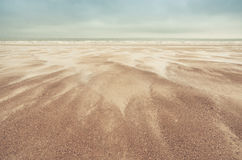 Sand dunes on North Sea Royalty Free Stock Photo