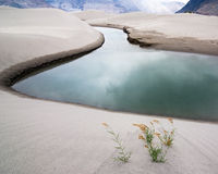 Sand dunes of Nubra Valley. Himalaya, India Royalty Free Stock Photography