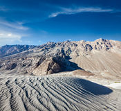 Sand dunes. Nubra valley, Ladakh, India Stock Images