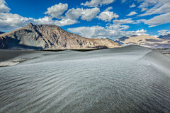 Sand dunes. Nubra valley, Ladakh, India Royalty Free Stock Photo