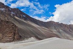 Sand dunes. Nubra valley, Ladakh, India Stock Photography