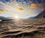 Sand dunes. Nubra valley, Ladakh, India Royalty Free Stock Photo