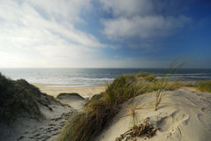 Sand dunes and ocean Stock Photography