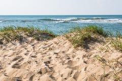 Sand Dunes With Ocean in Virginia Beach, Virginia. Sand dunes with grass and an ocean background in Virginia Beach, Virginia royalty free stock photo