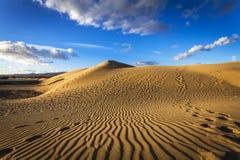 Sand Dunes Of Maspalomas Royalty Free Stock Photos