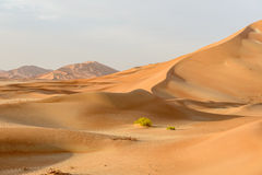 Sand dunes in Oman desert (Oman) Royalty Free Stock Photos