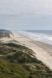 Sand dunes in the Oregon coast Royalty Free Stock Images