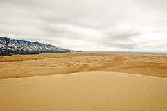 Sand Dunes Panorama Royalty Free Stock Images