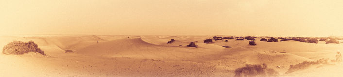 Sand dunes panorama in sepia Royalty Free Stock Photo
