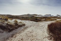 Sand dunes beside a path or way on the island of Amrum in spring. On a sunny spring day stock photography