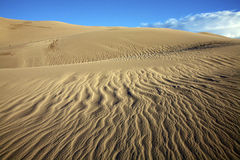 Sand Dunes Patterns. Patterns in the sand dunes at Great Sand Dunes National Park, Colorado Stock Image