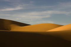 Sand dunes in the Pinacate desert. Dunes at sunset in the Gran Desierto del Altar, in Sonora Mexico Stock Image