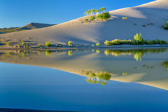 Sand dunes and pond of water with reflection Stock Photos