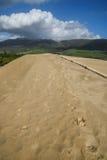 Sand dunes at Punta de la Paloma, Andalucia, Spain Stock Image