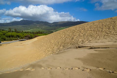 Sand dunes at Punta de la Paloma, Andalucia, Spain Stock Photo