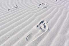 Sand Dunes with Ripples footprint. Sand Dunes with Ripples bare foot prints Stock Photography