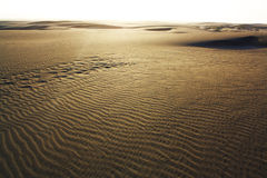 Sand Dunes. Ripples on hills of sand royalty free stock images