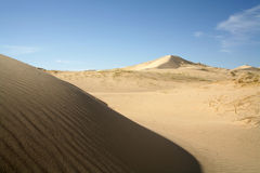 Sand dunes rippling in the desert Royalty Free Stock Image