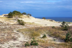 Sand dunes of the russian part Curonian Spit in autumn Stock Image