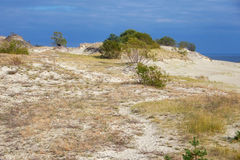 Sand dunes of the russian part Curonian Spit in autumn Royalty Free Stock Photos
