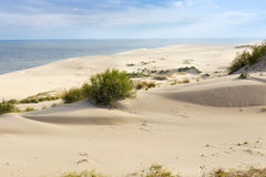 Sand dunes of the russian part Curonian Spit in autumn. Royalty Free Stock Images
