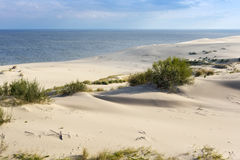 Sand dunes of the russian part Curonian Spit in autumn. Royalty Free Stock Photography