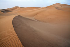 Sand dunes in Sahara. Stock Images