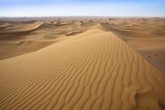 Sand dunes in Sahara. Stock Photos