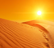Sand dunes in Sahara Royalty Free Stock Photography