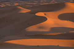 Sand dunes, Sahara Desert Africa Royalty Free Stock Photo