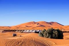 Sand dunes in Sahara desert in Africa Royalty Free Stock Photos