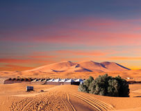 Sand dunes in Sahara desert in Africa Royalty Free Stock Photography