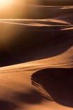 Sand dunes of the Sahara desert Royalty Free Stock Photography