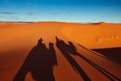 Sand dunes in the Sahara Desert, Merzouga Stock Images