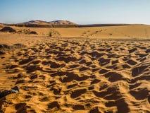 Sand dunes in the Sahara Desert, Merzouga, Morocco. Sand dunes in the Sahara Desert Erg Chebbi, Merzouga, Morocco Royalty Free Stock Photo