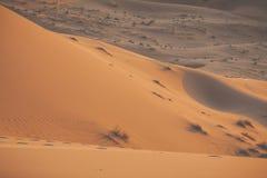 Sand dunes in the Sahara Desert, Morocco Stock Images