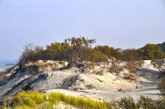 Sand dunes. Overgrown with grass, the Baltic Sea, the Curonian Spit royalty free stock photo