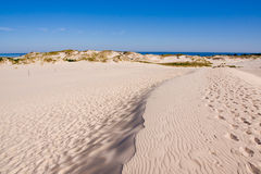 Sand dunes at the sea Royalty Free Stock Photos