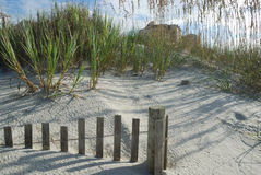 Sand dunes sea oats and fence Stock Photos