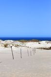 Sand dunes and the seaside. Seaside and the sand dunes with green hills Royalty Free Stock Image
