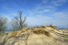 Sand dunes on shores of lake michigan. Royalty Free Stock Photography