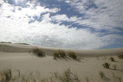 Sand dunes and sky. Michigan sand dunes against blue sunny sky Royalty Free Stock Images