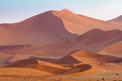 Sand dunes of Sossusvlei. The fading light casts shadows across the immense and beautiful sand dunes of Sossusvlei, Namibia stock photography