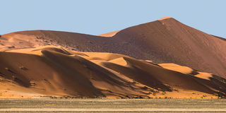 Sand dunes at Sossusvlei in the Namib Desert. Against blue sky, Namibia, Africa Stock Photography