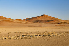 Sand dunes in Sossusvlei, Namibia. Africa royalty free stock photography