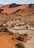 Sand Dunes at Sossusvlie - Namibia Royalty Free Stock Image