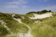 Sand dunes in south Sweden Royalty Free Stock Photography