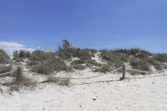 Sand dunes in spain. Sand dunes of es trenc on spanish island mallorca Royalty Free Stock Image