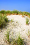 Sand Dunes in the Summer Time Royalty Free Stock Photos